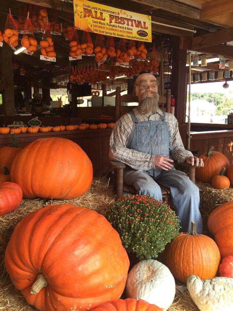 fall festival pumpkin patch apopka fl club lake plantation